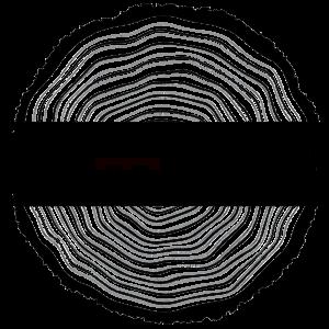 logo officiel dcosta